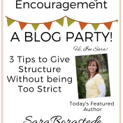 Tween Parenting Blog Party Featured Author Sara Borgstede Like Minded Musings