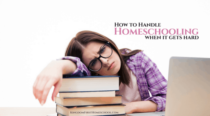 Guest Post: How to Homeschool When its Hard - Homeschooling 101 Blog Party!