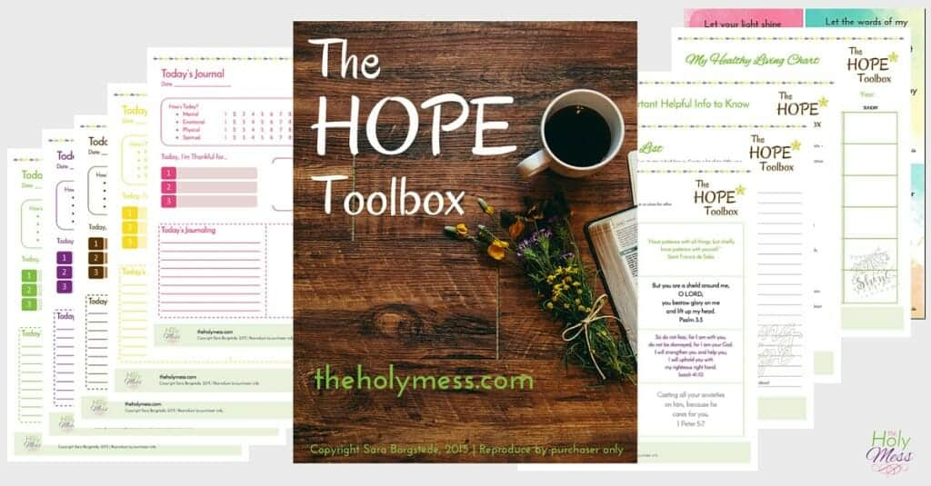 My-Hope-Toolbox-Like Minded Musings The Holy Mess