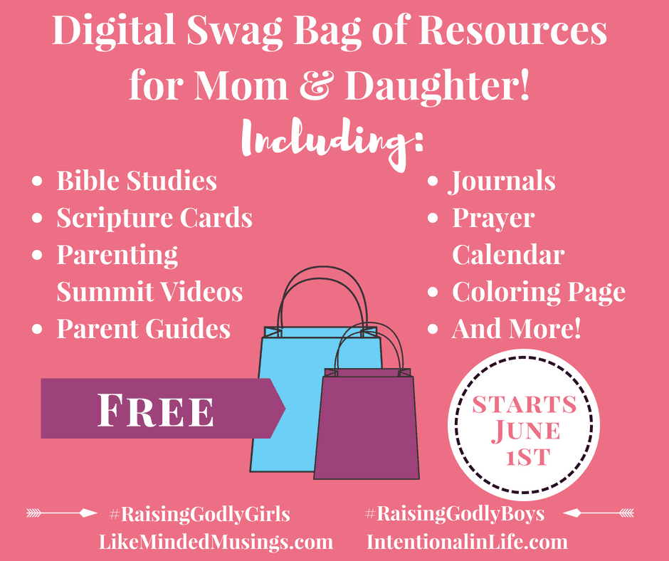 Facebook Swag Bag Raising Godly Girls Event Like Minded Musings