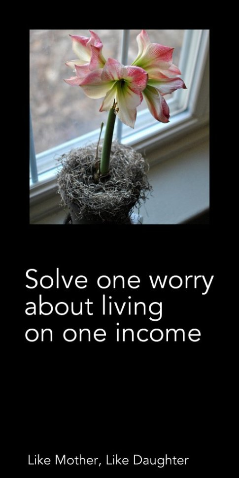 Solve one worry about living on one income ~ Like Mother, Like Daughter