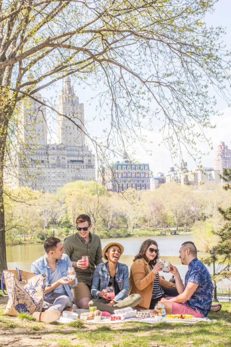 Picnic in Central Park, New York City