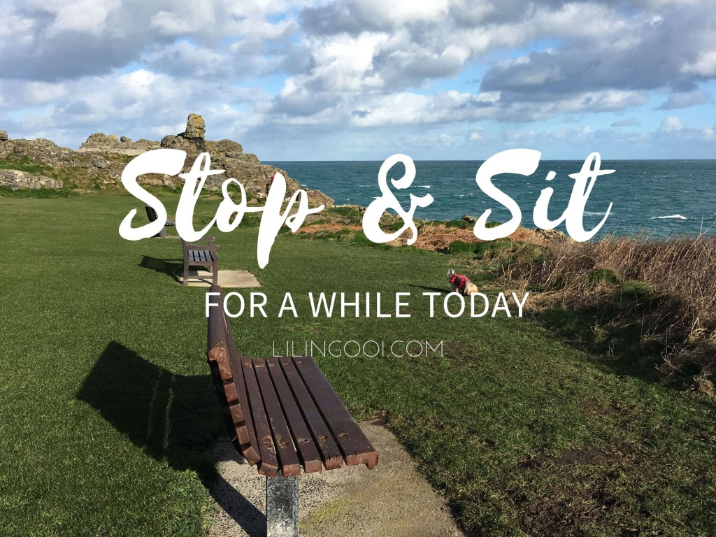 Stop and Sit for a while today
