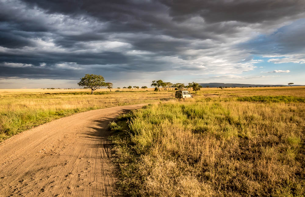 Photo guide - A safari in Tanzania - Serengeti National Park - in pictures