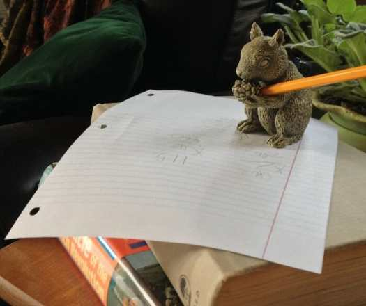 squirrelmath