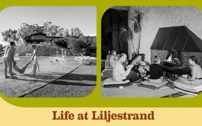 Life at Liljestrand
