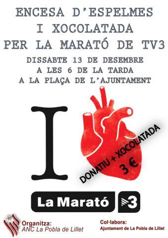 CARTELL MARATÓ 2014_600