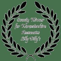 Award4-250