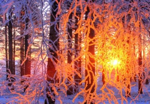 Snowy Sunset, Finland