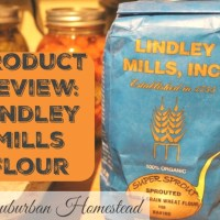 Product Review:  Lindley Mills Flour & Karen Lynn's Cranberry Orange Persimmon Bread Recipe