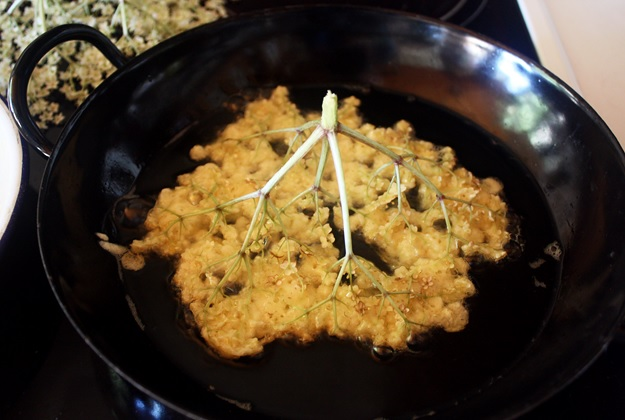 Elderflower Fritters Austrian Recipe