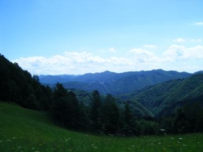 hlevica_summer.jpg