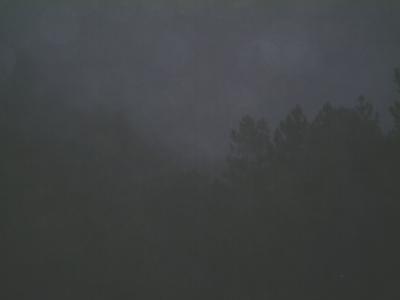 juntas_fog.jpg