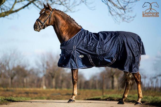 Profi-Rider Regendeken 1680 Denier