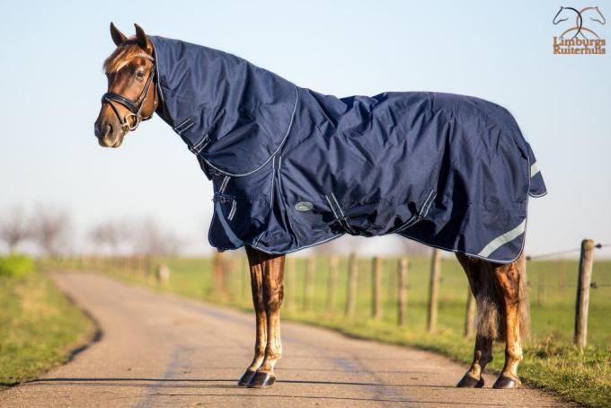 Profi-Rider Winterdeken Waterdicht + Hals B