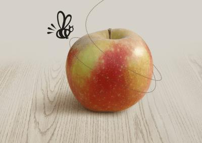 Nos pommes bio