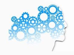 psychology business finance