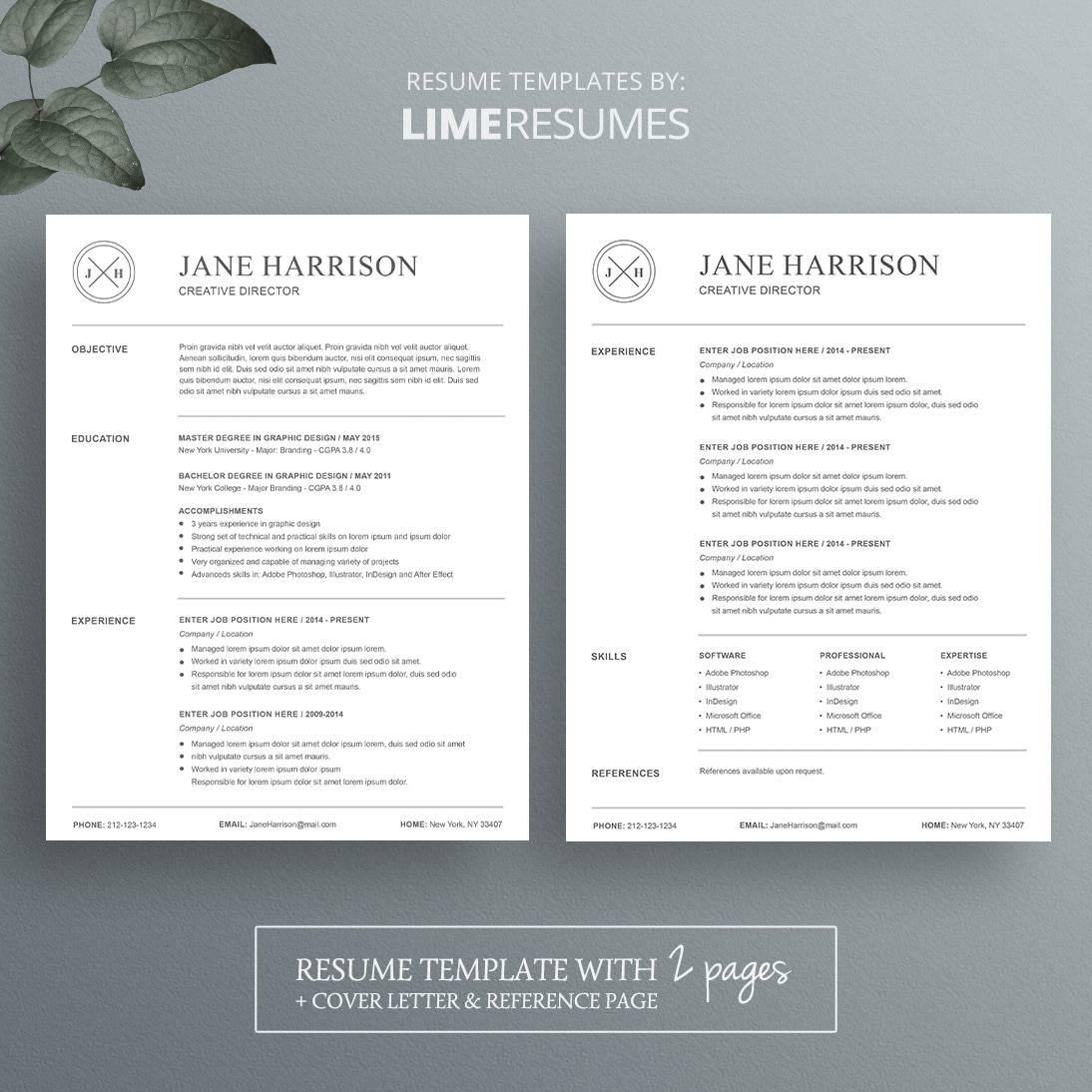 resume f resume template amazing resume templates cv cv fancy resume
