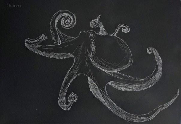 Octopus Negative