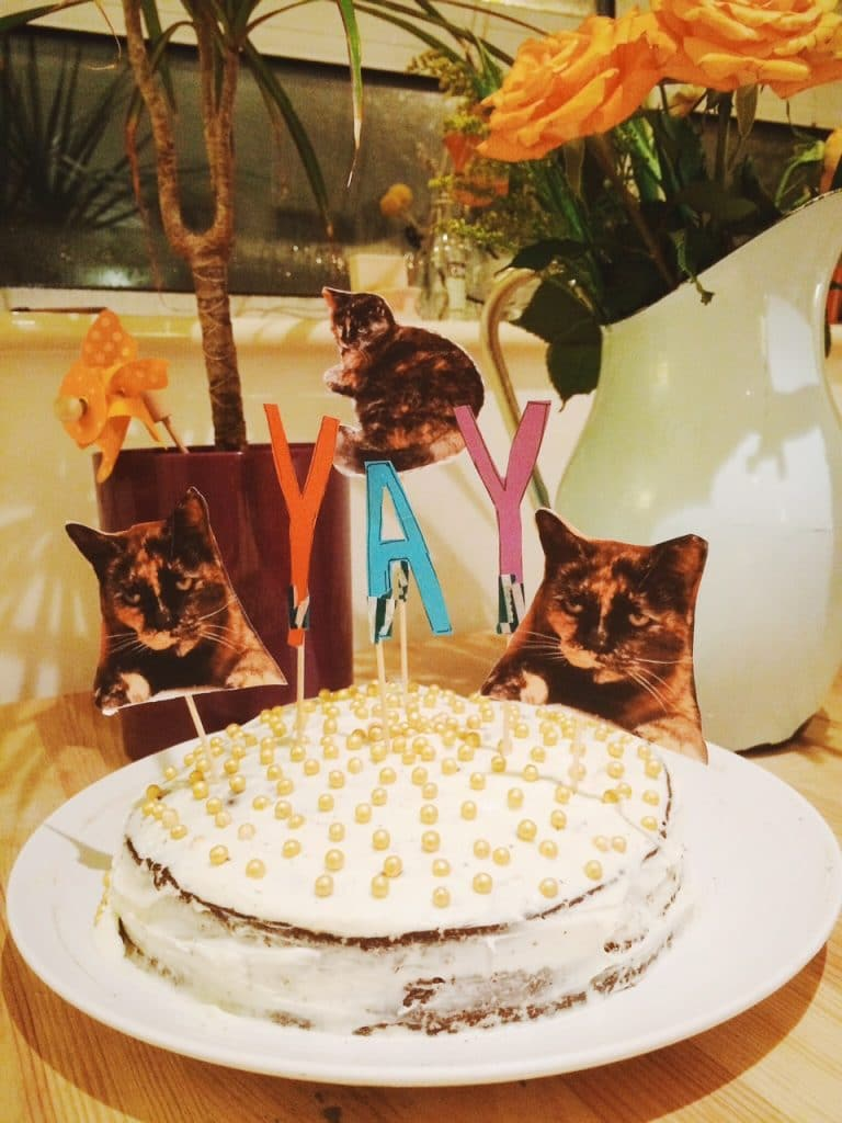 My Kitty Ishtar and Red Wine Velvet Cake