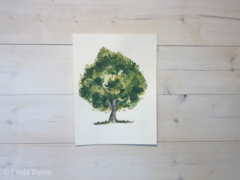 How to paint an oak tree in watercolour paints