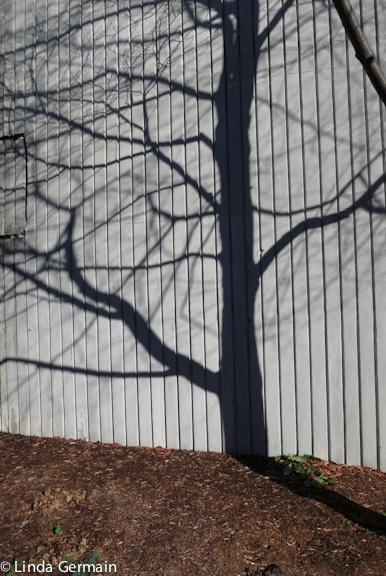 Cast shadows inspire printmaking tools Linda Germain