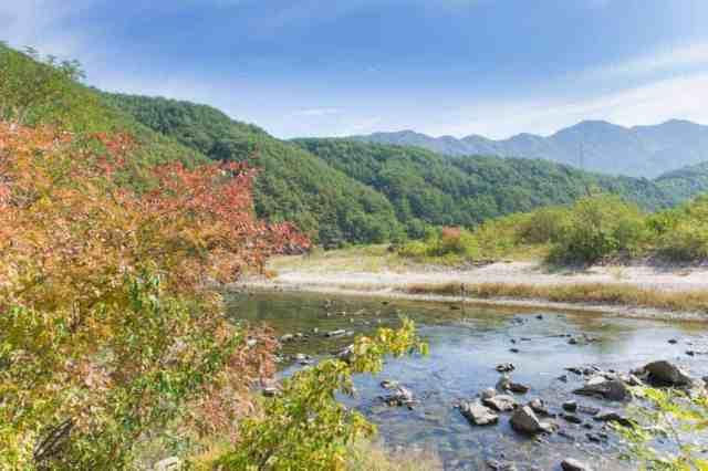 Camping in Korea Chuseok Gangwon Province (76 of 135)