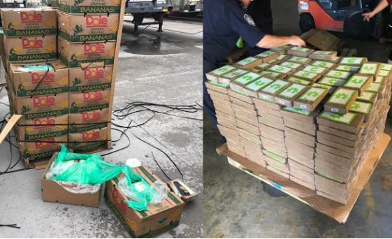 Photos: Police discover$18M worth of cocainedisguised as Bananasbeing shipped to aTexasprison farm