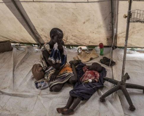 Fresh cholera outbreak kills 5 people and leave16 hospitalised in Gombe State