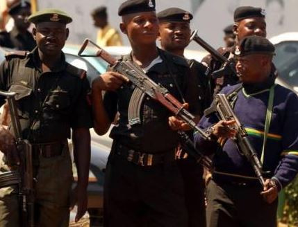 Police arrest 21-year-old man for allegedly raping 10 of his boss' children in Sokoto State