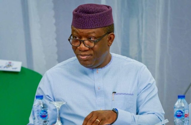 National Assembly is giving an impression of a hidden agenda. INEC should determine when to use electronic transmission of results  Fayemi
