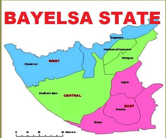 Bayelsa uncovers 612 ghost teachers on government payroll