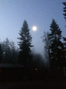 Waning wolf moon with fog.