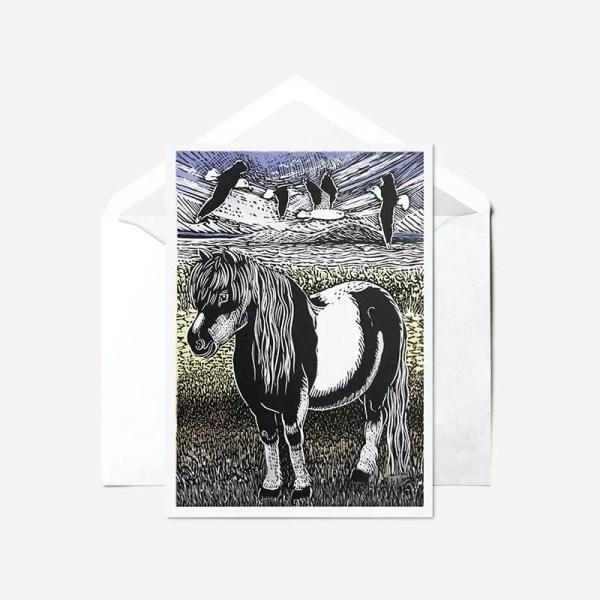 Shetland Pony - Card
