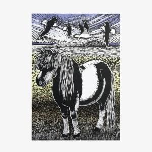 Shetland Pony - Linocut