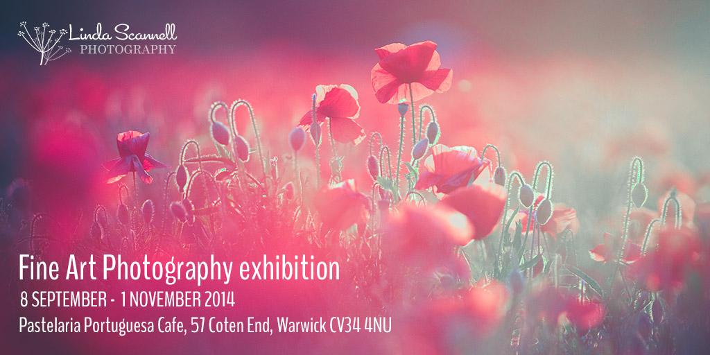 Fine art photography exhibition in Warwick - 2014 - Linda Scannell