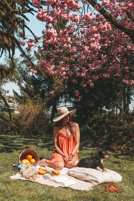 boho spring picnic biesbosch