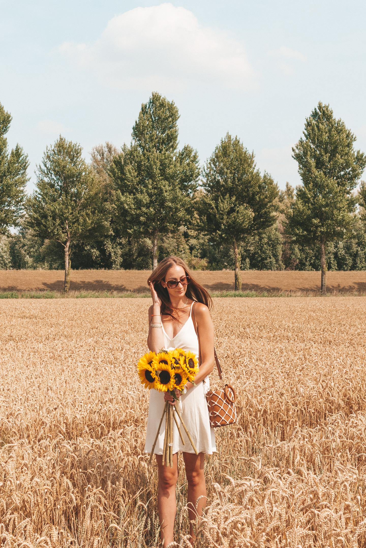zomershoot zonnebloemen tarwe natuur