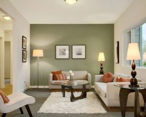 living room with sage green accent wall mistake