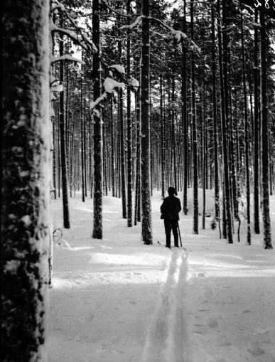1911, juli, Joh. Andersson på skogsinspektion i Likenäs
