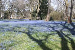 Alles blau auf dem Bergfriedhof