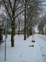 Winterimpression 2005