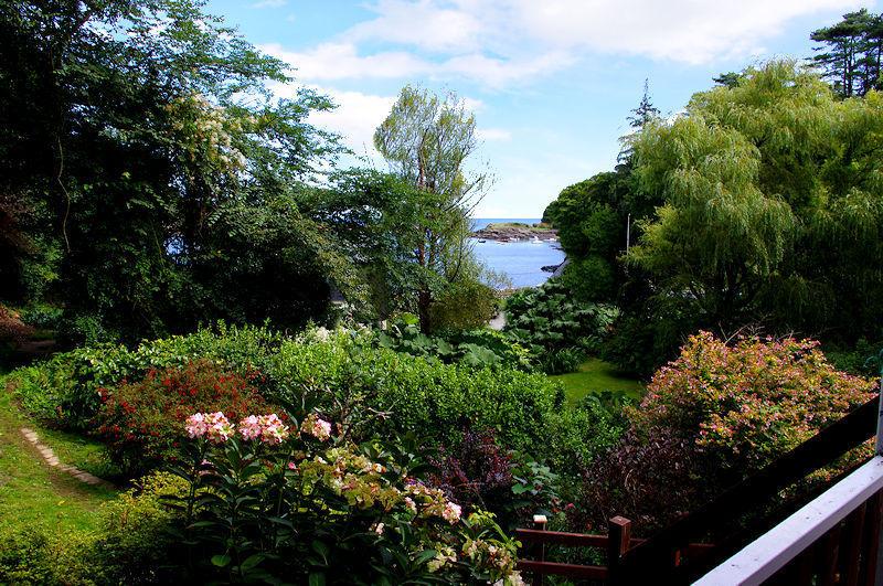 Curlew Cottage Garden Cornwall