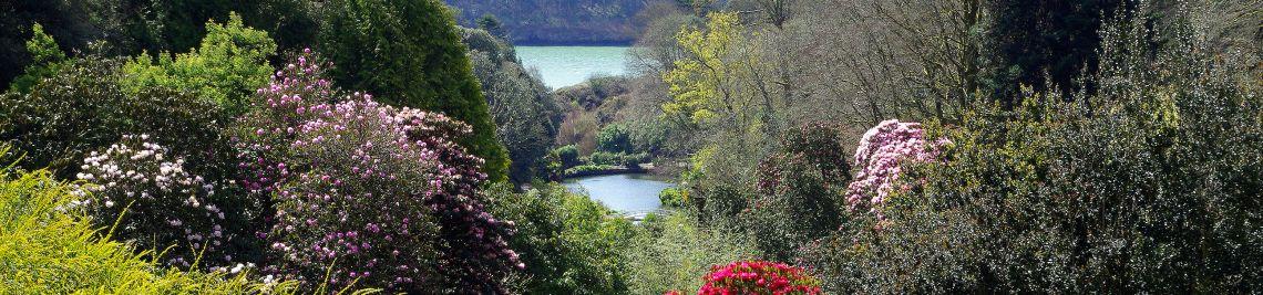 Trebah Gardens - landscapes Cornwall