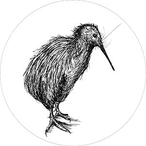 les-arbres-et-le-kiwi