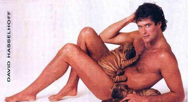 David-Hasselhoff-with-puppies