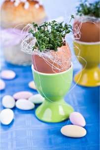 Creative uses for eggshells-inset 2