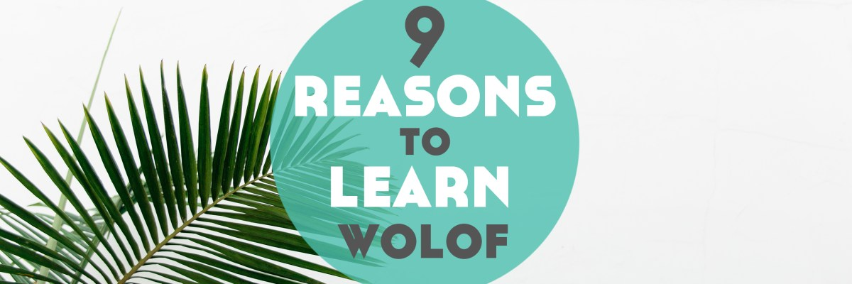 Have you ever wanted to learn an African language but not sure where to begin? What about learning Wolof? It's time for 9 Reasons to Learn Wolof.