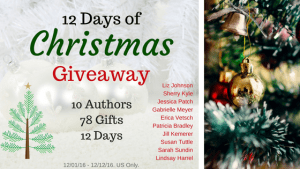 12 Days of Christmas Giveaway — Day 11