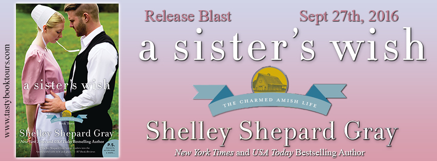 {New Release Blast} A Sister's Wish by @ShelleySGray